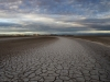 Delta.dawn.drybed.6625